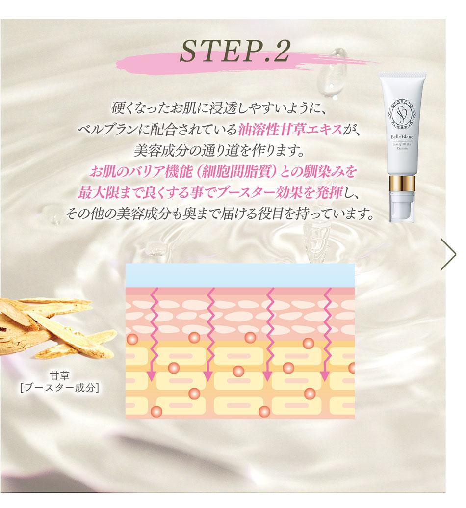 STEP2:硬くなったお肌に浸透しやすいように、ベルブランに配合されている油溶性甘草エキスが美容成分の通り道を作ります。お肌のバリア機能との馴染みを最大限まで良くする事でブースター効果を発揮し、その他の美容成分も奥まで届ける役目を持っています。